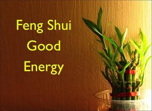 Feng Shui Objects House Protect