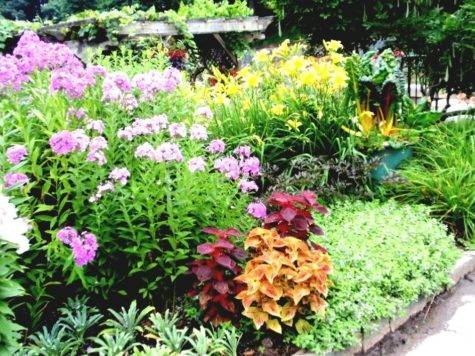 Flower Garden Ideas Cheap