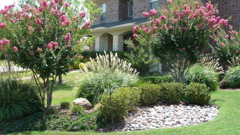 Flower Plants Trees Green Meadows Landscaping Design