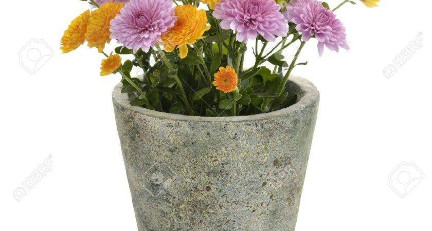 Flower Pot Part Weneedfun