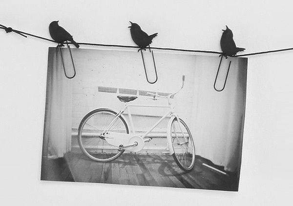 Fred Friends Birds Wire Hanger Clips Home