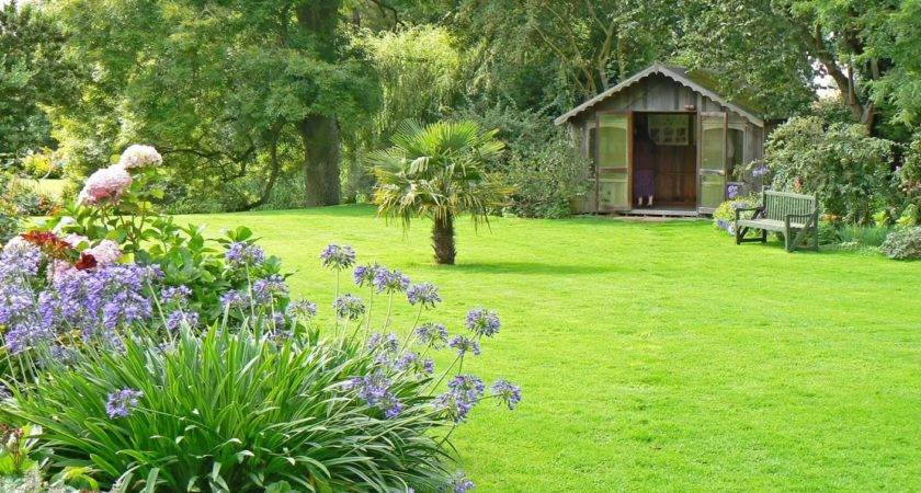 Garden Lawn Ideas Hedge Care