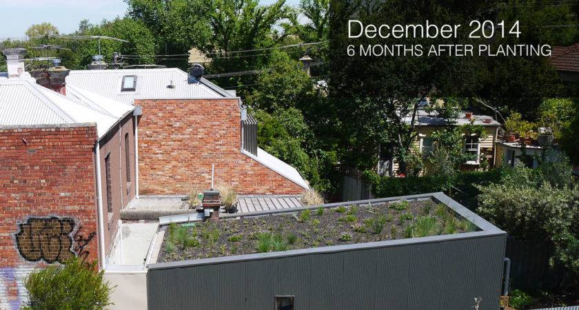 Garden Residential Rooftop Ideas Green Roof Concepts