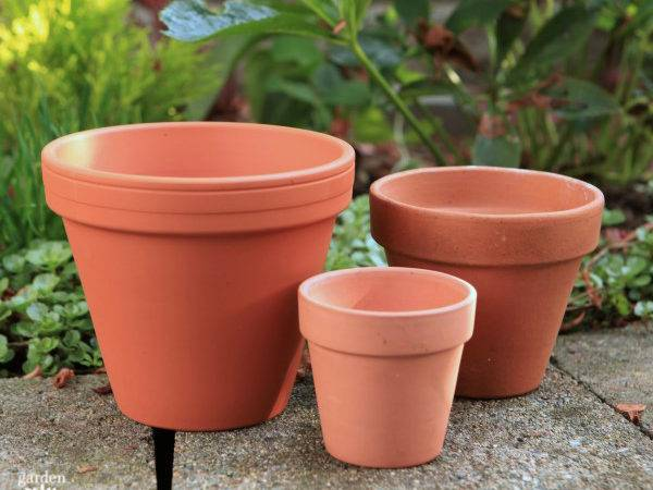 Gilty Pleasure Gold Painted Flowerpots Garden Therapy