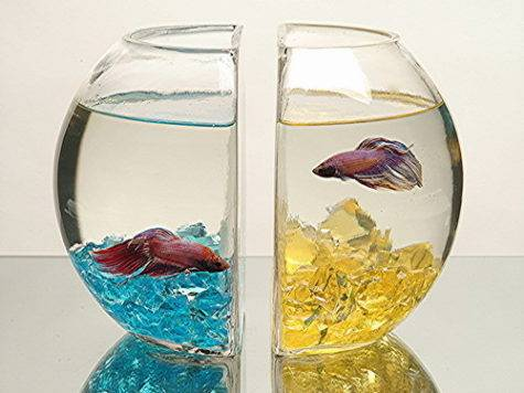 Glass Fish Bowl Book Ends