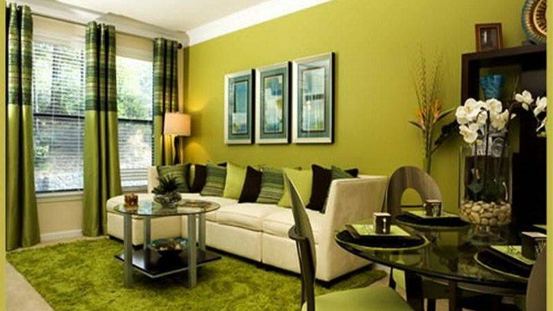 Goin Green Decorating Ideas Your Home