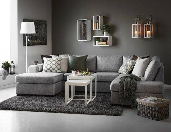 Gray Couch Living Room Ideas Sofa