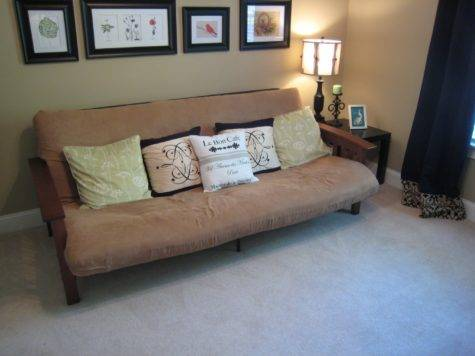 Guest Bedroom Ideas Futon Facemasre