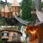 Hogwarts Tree House World Coolest Houses Mom
