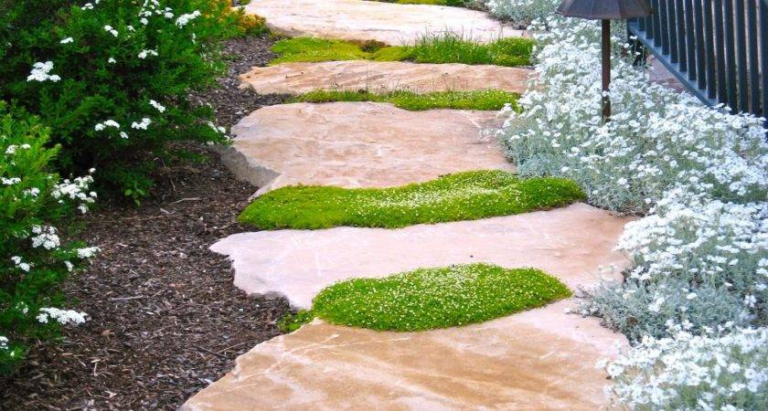 Ideas Creating Perfect Path Landscaping