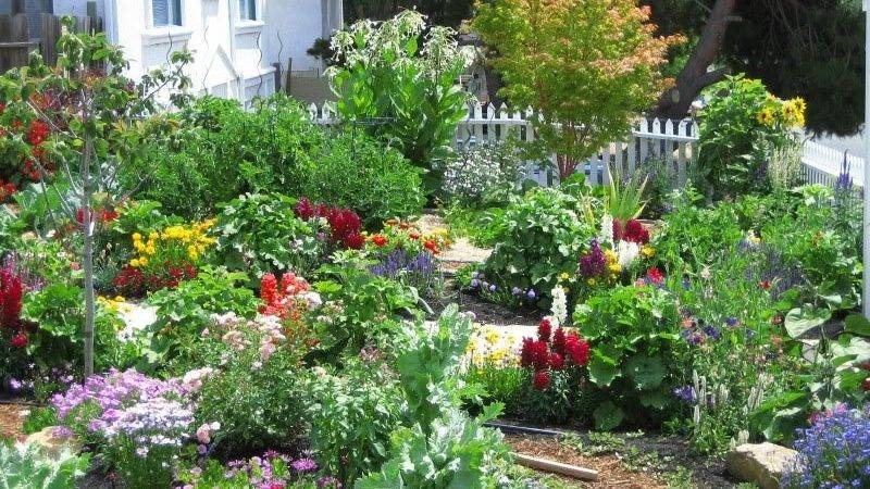 Ideas Flower Garden Designs Landscape Design