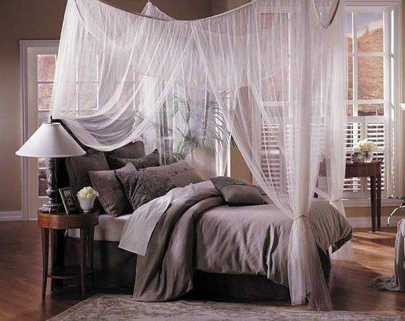 Its Life Want Canopy Beds