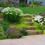 Landscaping Ideas Small Yards Photograph