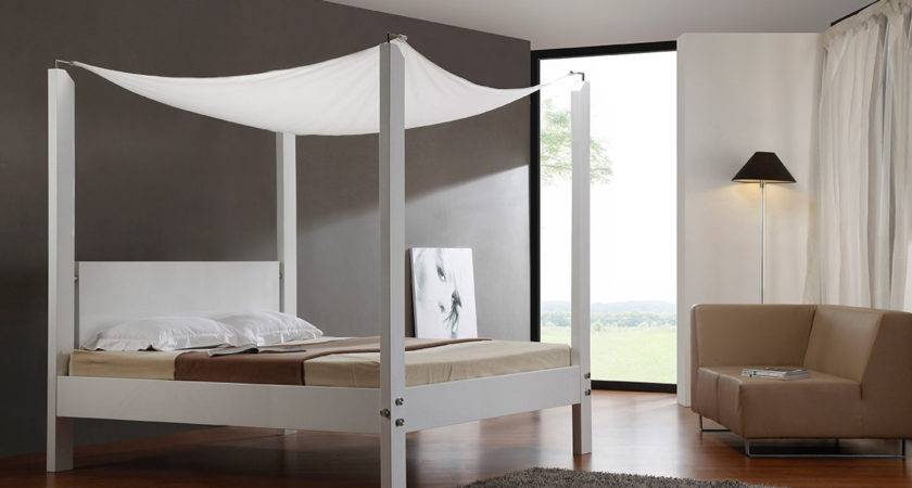 Lias Modern Canopy Bed