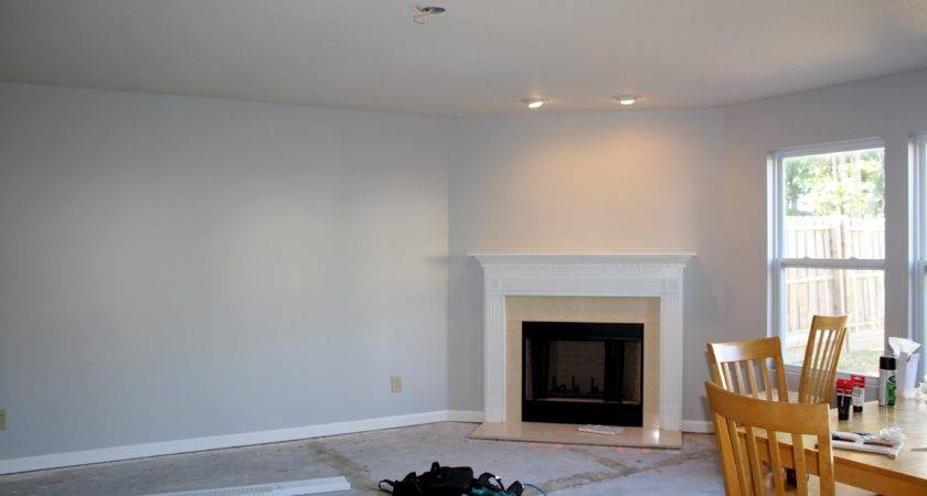 Light Grey Paint Color Living Room Nakicphotography