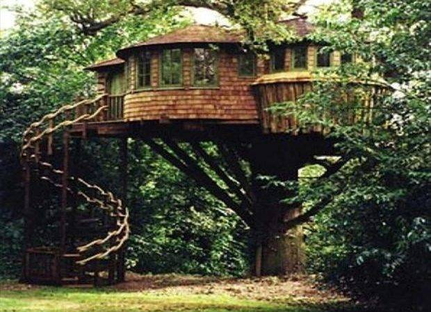 Look These Amazing Tree Houses Not