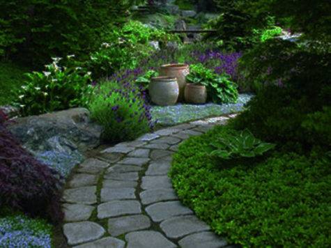 Lovely Pathways Well Organized Home Garden