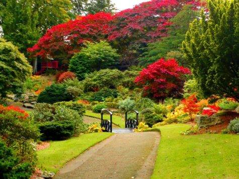 Lush Greenery Beautiful Gardens Wonderwordz