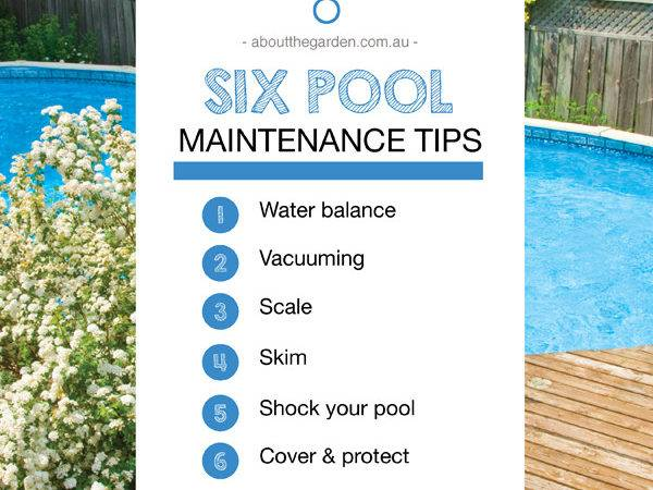 Maintaining Your Swimming Pool Garden