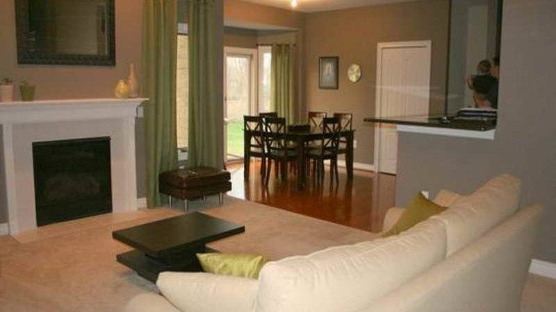 Miscellaneous Nice Living Room Colors Fireplace