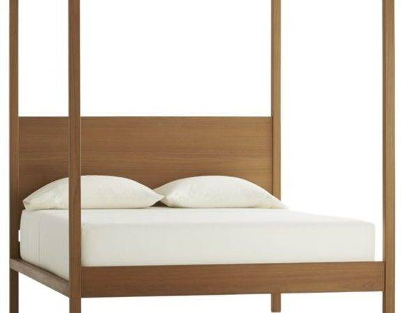 Modern Canopy Bed Ideas Your