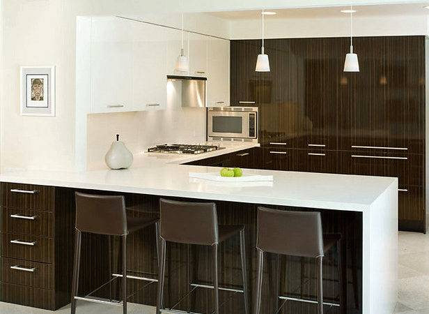 Modern Contemporary Kitchens Modernistic Design