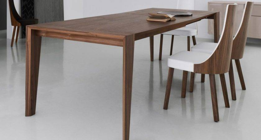 Modern Dining Table Chairs Home Design Ideas