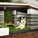Modern Dog House Imgkid Has