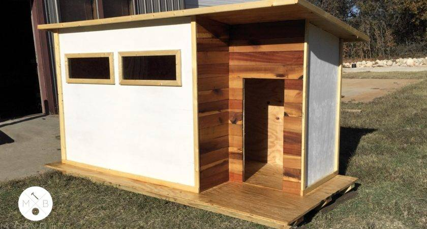 Modern Dog House Plans Awesome Build