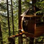 Most Amazing Treehouses Around World