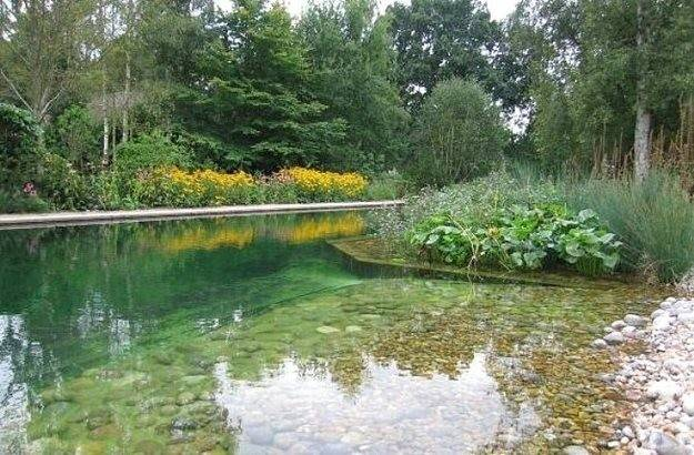 Natural Swimming Pools Won Believe Real