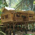One Kind Luxury Jungle House Cocles