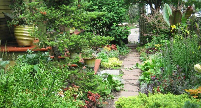 Organic Perennial Vegetable Gardening Info Tips