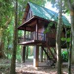 Our Jungle House Review Khao Sok Tree Houses Thailand