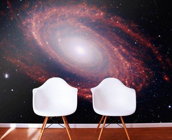 Outer Space Murals