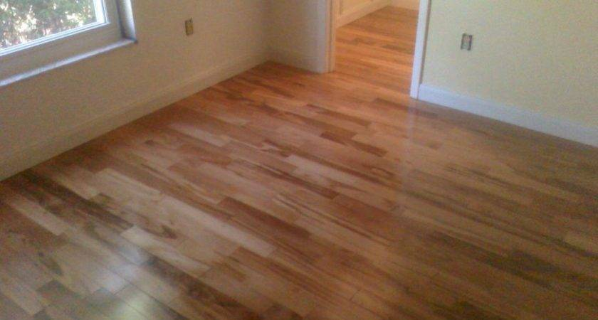 Pergo Flooring Original Laminate