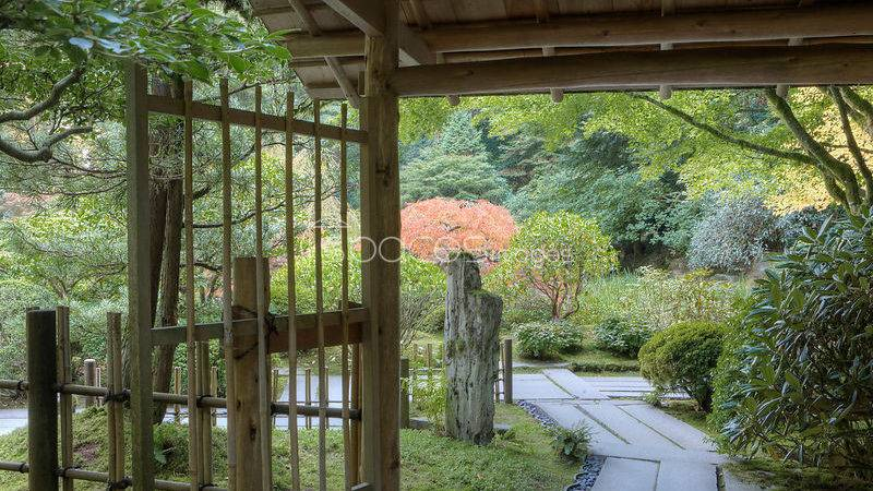 Photos Tea Garden Gate Japanese Portland