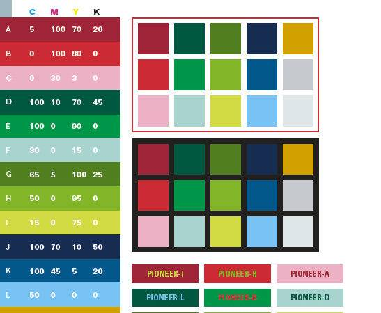 Pioneer Color Schemes Combinations Palettes