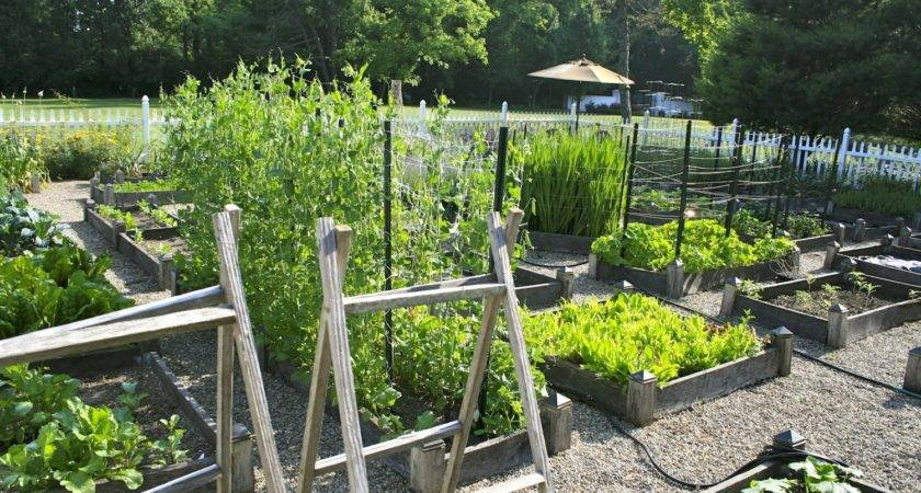 Planning Ideas Your Vegetable Garden Amy Stafford