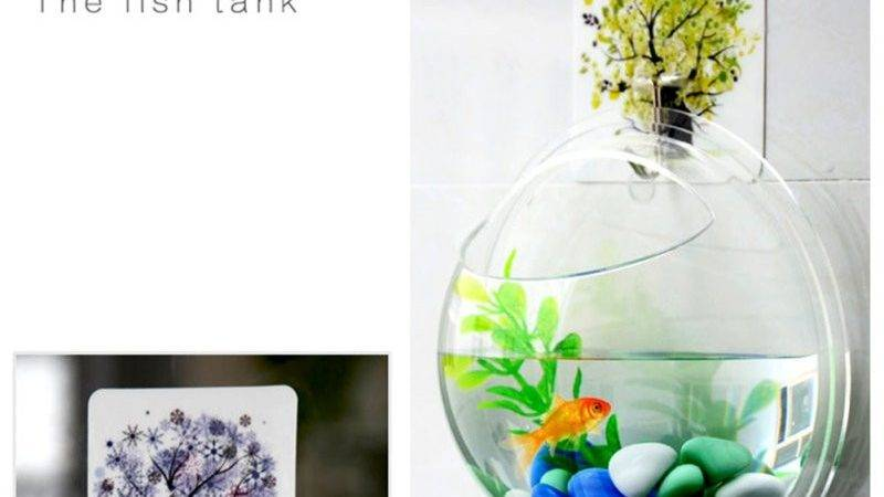 Plants Flower Wall Mounted Hanging Bubble Bowl Fish