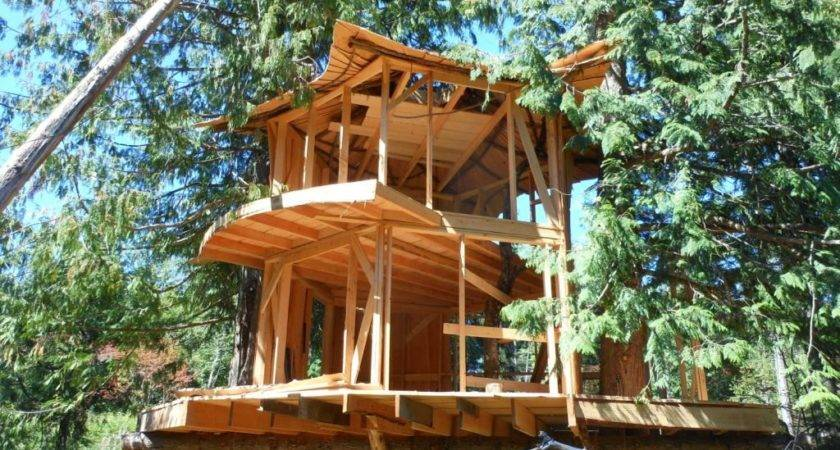 Prefabricated Tree House Home Design