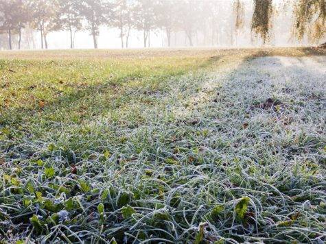 Prepare Lawn Winter Home Design