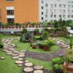 Rooftop Urban Garden Design Trends