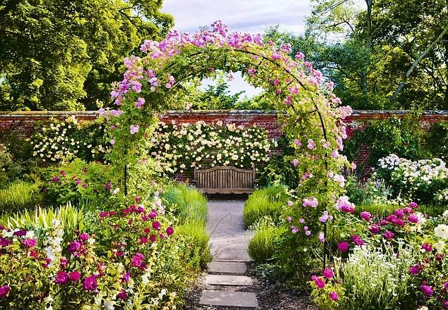 Roses Ready These Best Gardens