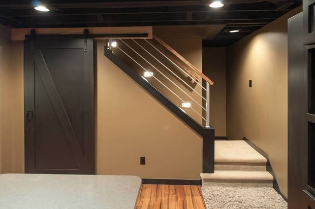 Schubbe Basement Remodel Traditional