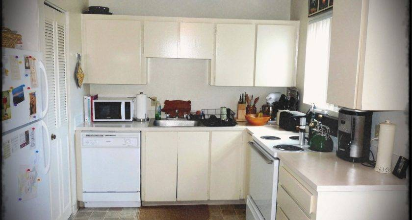 Shaped Small Apartment Kitchen Ideas Budget