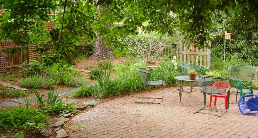 Show Your Backyard Oasis Did Much