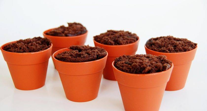 Simple Girl Flower Pot Cupcakes