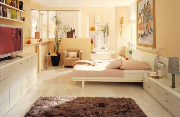 Small Apartment Bedroom Designs Ideas Interiorholic