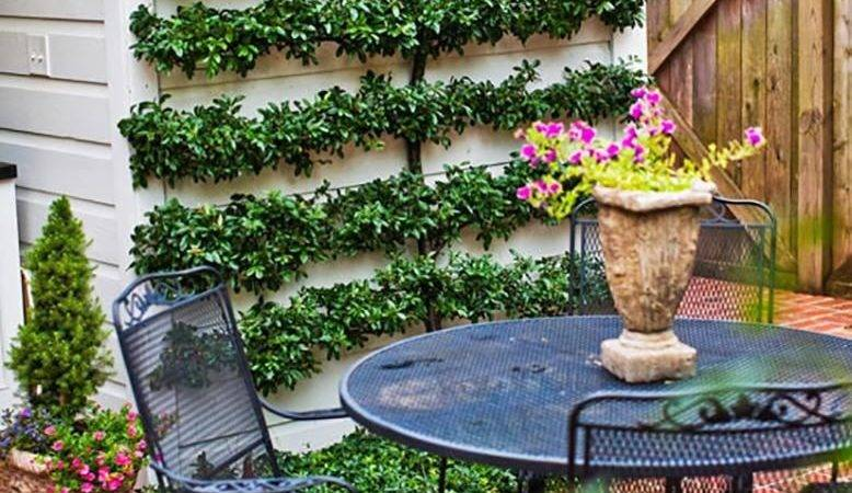 Small Backyard Landscaping Ideas Willey Blog